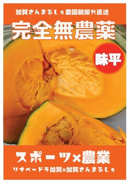無農薬 味平かぼちゃ5kg